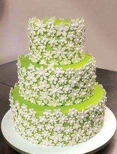 Мастика весенний торт теплогидроизоляция подвала
